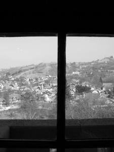 """Look Out the Window"" Copyright (C) Adina Florentina Toma"